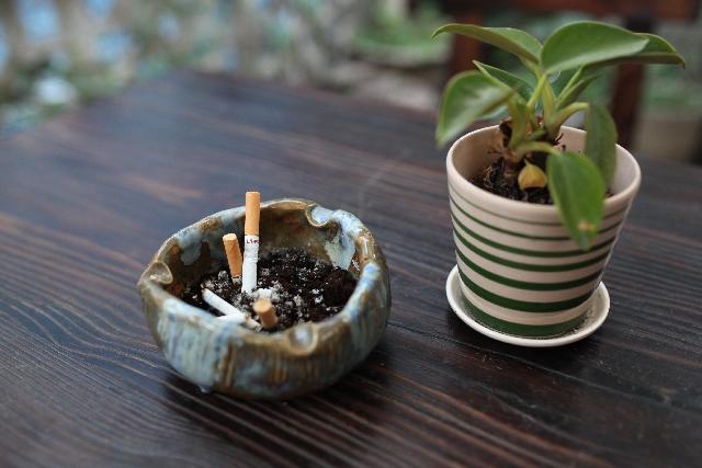 「禁煙の成功と失恋から立ち直るのは似ている」のアイキャッチ画像