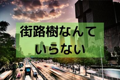 「街路樹はいらない。安全性とか自然環境はただの後付けの理由」のアイキャッチ画像