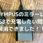OLYMPUSのミラーレスのバッテリーをUSBで充電したい!サードパーティー製で見つけた!